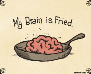 brain-is-fried